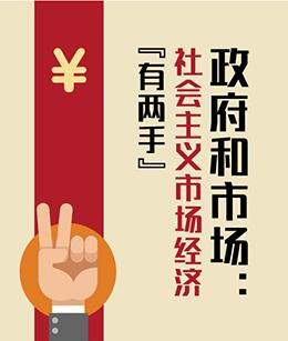 """政府和市场:社会主义市场经济""""有两手"""""""