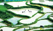 光明日报:把良好生态作为最普惠的民生福祉