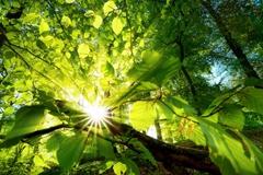 全国党校系统生态文明学科建设协作会议召开