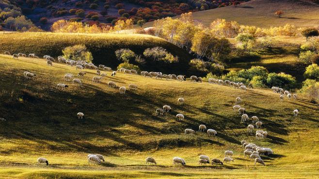 生态文明的中国道路